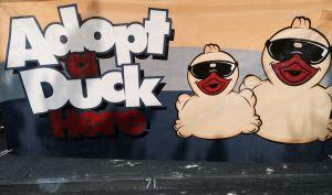 Adopt a Ducki